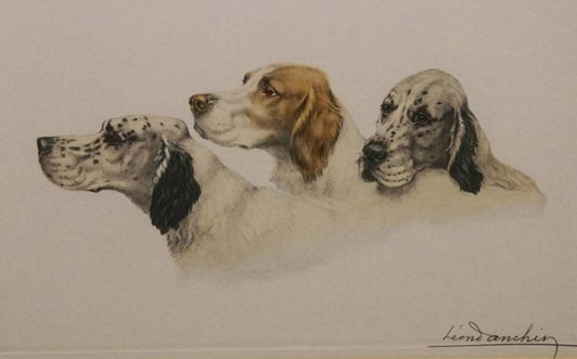 Three Setters by Leon Danchin